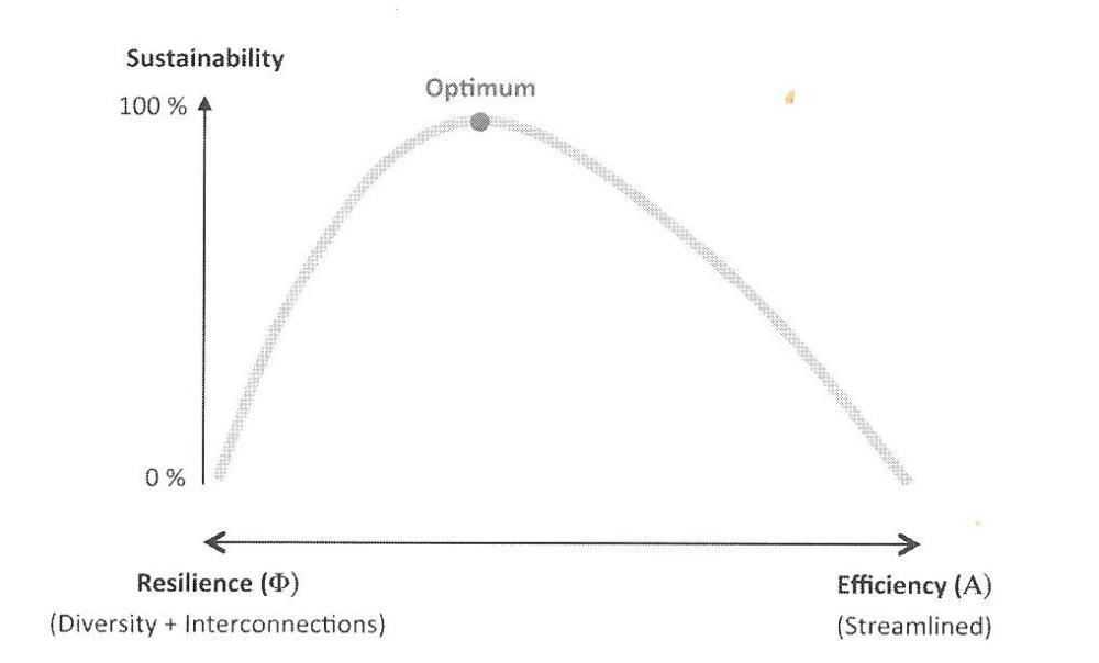 Economics: Seeking Optimal Balance (2/6)